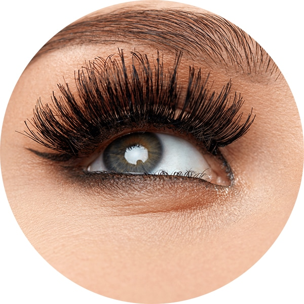 lash salon services troy